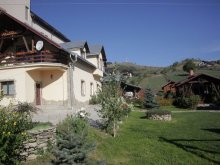 Bed & breakfast Miron Costin, Anastasia Guesthouse