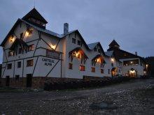 Pensiune Coasta Henții, Pensiunea Castelul Alpin