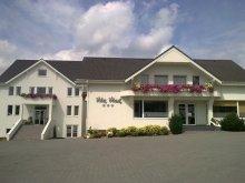 Villa Poienii de Jos, Vlad Villa