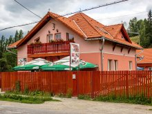 Accommodation Trebeș, Picnic Guesthouse