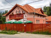 Pensiune Satu Nou (Pârgărești), Pensiunea Picnic