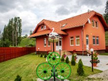Cazare Transilvania, Voucher Travelminit, Pensiunea Picnic