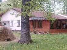 Pensiune Priboiu (Brănești), Pensiunea Forest Mirage