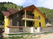 Panzió Bălteni, Voineșița Panzió