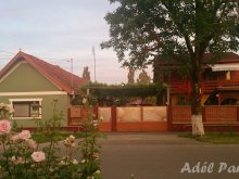 Accommodation Ostrov, Adél BnB