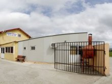 Cazare Cetate, Hotel Safta Residence