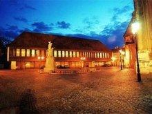 Accommodation Gyor (Győr), Hotel Konferencia