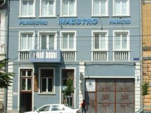 Accommodation Viscri, Maestro Guesthouse
