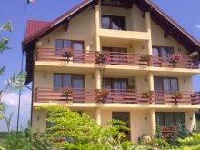 Accommodation Zărnești, Acasă Guesthouse