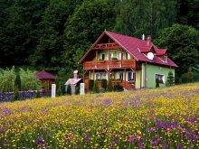 Kulcsosház Hăghiac (Dofteana), Sólyomkő Kulcsosház