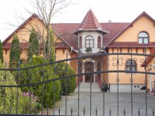 Accommodation Mikófalva, Hegyi Guesthouse