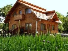 Accommodation Voislova, Iancu Guesthouse