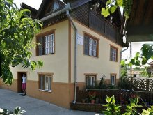 Accommodation Rusca Montană, Iancu Guesthouse