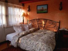 Accommodation Fețeni, Castelul Maria Vila