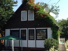 Guesthouse Balatonvilágos, Napsugár Vacation House