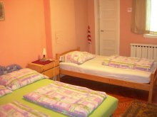 Accommodation Valea Borcutului, Auguszta- Istenszéke Vadászkastély Guesthouse