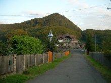 Accommodation Valea Poenii, Auguszta- Istenszéke Vadászkastély Guesthouse