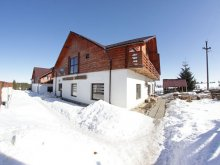 Accommodation Domoșu, Meridian Guesthouse
