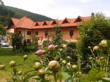 Accommodation Gura Siriului, Mariana Guesthouse