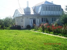 Accommodation Tudor Vladimirescu (Avrămeni), La Bunica Guesthouse