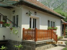 Casă de oaspeți Sânbenedic, Casa de oaspeți Anci
