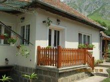 Casă de oaspeți Valea Giogești, Casa de oaspeți Anci