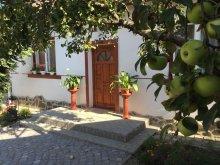 Kulcsosház Sövénység (Fișer), Hintó Villa