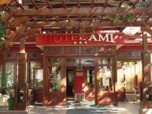 Accommodation Lacu Sărat, Hotel Ami