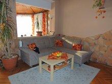 Accommodation Szigetszentmárton, Bruda Guesthouse