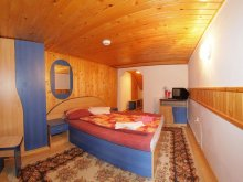 Accommodation Valea Zălanului, Kárpátok Guesthouse