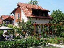 Accommodation Căprioara, Sub Cetate B&B