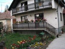 Casă de vacanță Veszprémfajsz, Casa de vacanță Bazsó