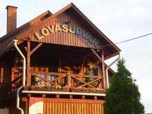 Guesthouse Tarcal, Martinek Lovasudvar és Ifjúsági Szállás B&B