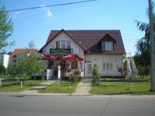 Accommodation Tiszakeszi, Füredi Apartment