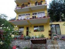 Accommodation Cracu Teiului, Floriana Guesthouse