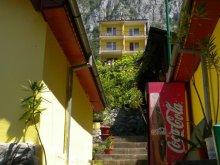 Casă de vacanță Cârșa Roșie, Satul de vacanță Floriana