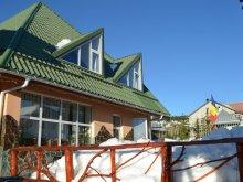 Accommodation Voineșița, Condor Guesthouse