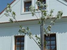 Vendégház Bakonybél, Király Ház