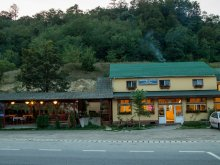 Bed & breakfast Bădești, Cristina