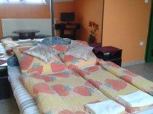 Bed & breakfast Tiszalök, Kisdiófa Guesthouse
