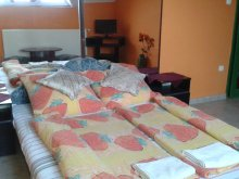 Bed & breakfast Vásárosnamény, Kisdiófa Guesthouse