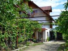 Casă de oaspeți Valea Măgherușului, Casa Madaras