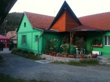 Bed & breakfast Ocna de Sus, Zöld Laguna Guesthouse