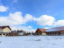Accommodation Butești (Horea), Doru' Guesthouse