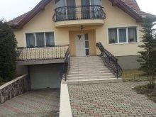 Casă de oaspeți Târgușor, Casa de oaspeți Balázs