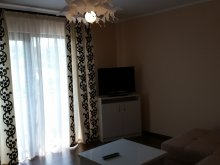 Accommodation Marginea (Buhuși), Carmen Apartment