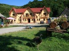 Accommodation Alunișu, Dariana Guesthouse