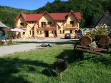 Accommodation Zece Hotare, Dariana Guesthouse