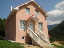 Villa Sólyomkővár (Șinteu), Fabiale Villa