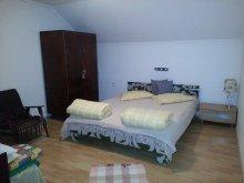 Apartment Bârlești-Cătun, Judith Guesthouse